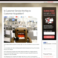 Is Customer Service the Key to Customer Acquisition?